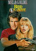 Pták na drátě (1990)
