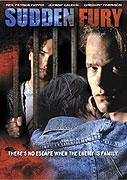 Záchvat zuřivosti (1993)