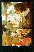Rudí (1981)