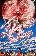 Labyrint vášní (1982)
