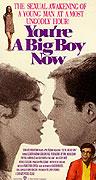 Teď už jsi velký chlapec (1966)