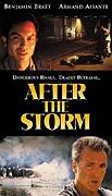 Po bouři (2001)