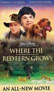 Kde roste červené kapradí (2003)