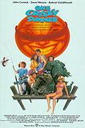 Ztřeštěné léto (1986)