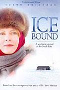 Cesta k ledu (2003)