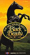 Nová dobrodružství Černého Bleska (1990)