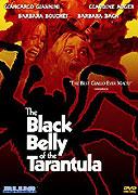 Tarantola dal ventre nero, La (1971)