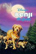 Hledá se Benji (1987)