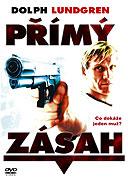 Přímý zásah (2004)
