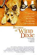 Co způsobil Winn-Dixie (2005)