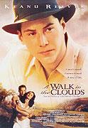 Procházka v oblacích (1995)