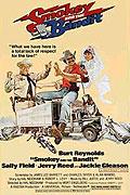 Polda a bandita (1977)