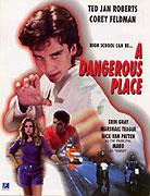 Dangerous Place, A (1995)