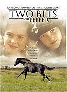 Čtvrťák a Pepř (1995)