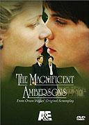 Úžasní Ambersonovi (2002)