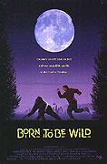 Katie - Dítě divočiny (1995)