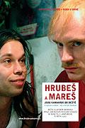Hrubeš a Mareš jsou kamarádi do deště (2005)