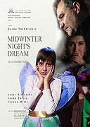 Sen zimní noci (2004)
