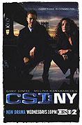 Kriminálka New York (2004)