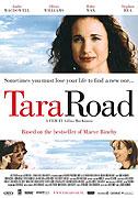 Dům na Tara Road (2005)