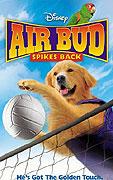 Můj pes Buddy V (2003)