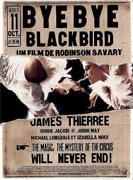 Sbohem, černý ptáku! (2004)