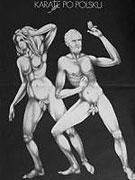 Karate po polsku (1982)