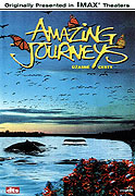 Úžasné cesty (1999)