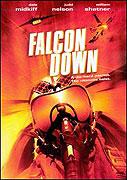 Falcon Down (2000)