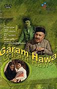 Garam Hawa (1973)