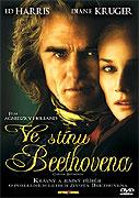 Ve stínu Beethovena (2006)
