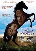 Dotyk divokých koní (2002)