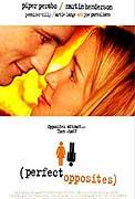 Dokonalé protiklady (2004)