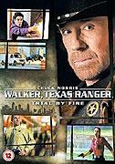 Walker, Texas Ranger: Falešné obvinění (2005)