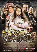 Saxána a Lexikon kouzel (2011)