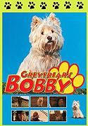 Bobby (2005)