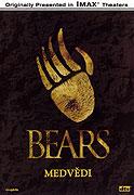 Medvědi (2001)
