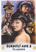 Šokující Asie 3: Po setmění (1995)