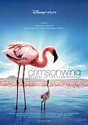 Crimson Wing: Mystery of the Flamingos, The (2008)
