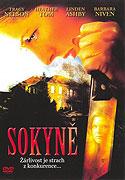 Sokyně (2006)