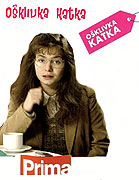 Ošklivka Katka (2008)