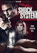 Otřes systému (2006)