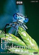 Život pod našima nohama (2005)