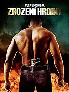 Hledá se hrdina (2008)