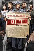 Next Day Air (2009)