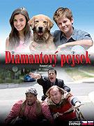 Miliónový pes (2008)