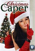 Vánoční loupež (2007)