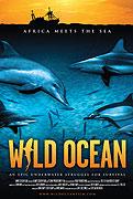 Divoký oceán 3D (2008)