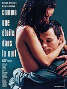 Comme une étoile dans la nuit (2008)