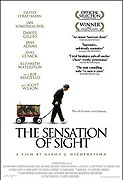 Sensation of Sight, The (2006)